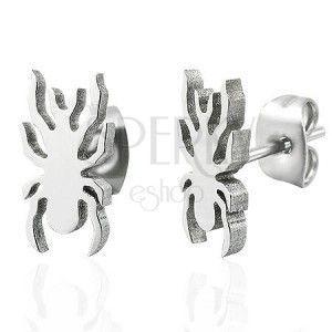 Stalowe kolczyki w srebrnym odcieniu - lśniący pajączek obraz