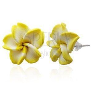 Kolczyki z masy FIMO - żółto-biały kwiat obraz
