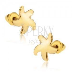 Kolczyki wkręty, błyszcząca złota rozgwiazda obraz