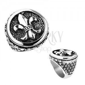Pierścionek ze stali, srebrny kolor, patyna, Fleur de Lis w kole, serduszka obraz