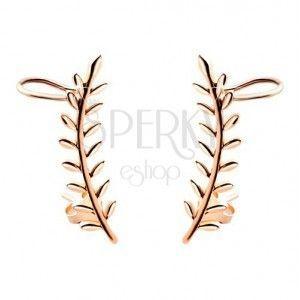 Crawler kolczyki miedzianego koloru, srebro 925, gałązka z liśćmi, sztyfty i haczyki obraz
