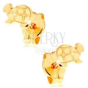 Złote kolczyki 585 - lśniący żółw z wygrawerowanymi szczegółami obraz