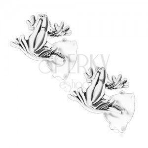 Patynowane kolczyki, srebro 925, siedząca żabka, sztyfty obraz