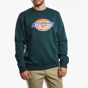 Bluza męska Dickies Pittsburgh 02 200241 FOREST obraz
