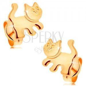 Kolczyki z żółtego 14K złota - lśniący kotek, wkręty obraz