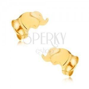 Złote kolczyki wkręty 375 - lśniący malutki słonik obraz