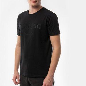 Iceberg - T-shirt obraz