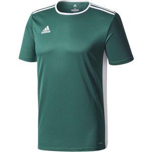 adidas ENTRADA 18 JSY zielony M - Koszulka piłkarska męska obraz
