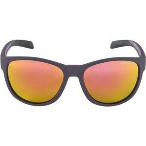 Alpina Sports NACAN II - Okulary przeciwsłoneczne unisex obraz